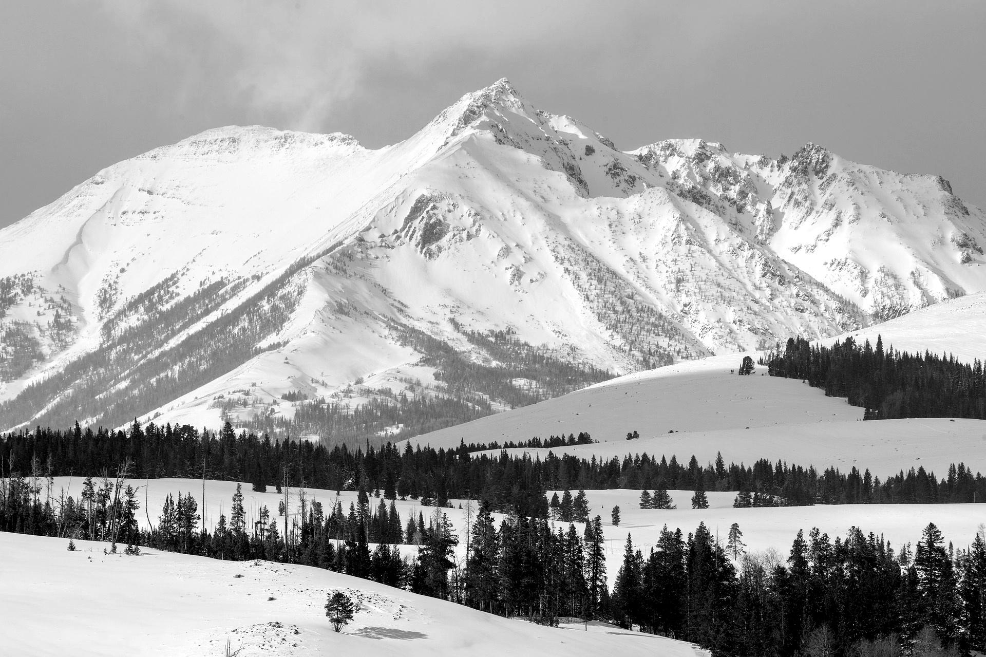 Zabezpieczony: Montana XIV